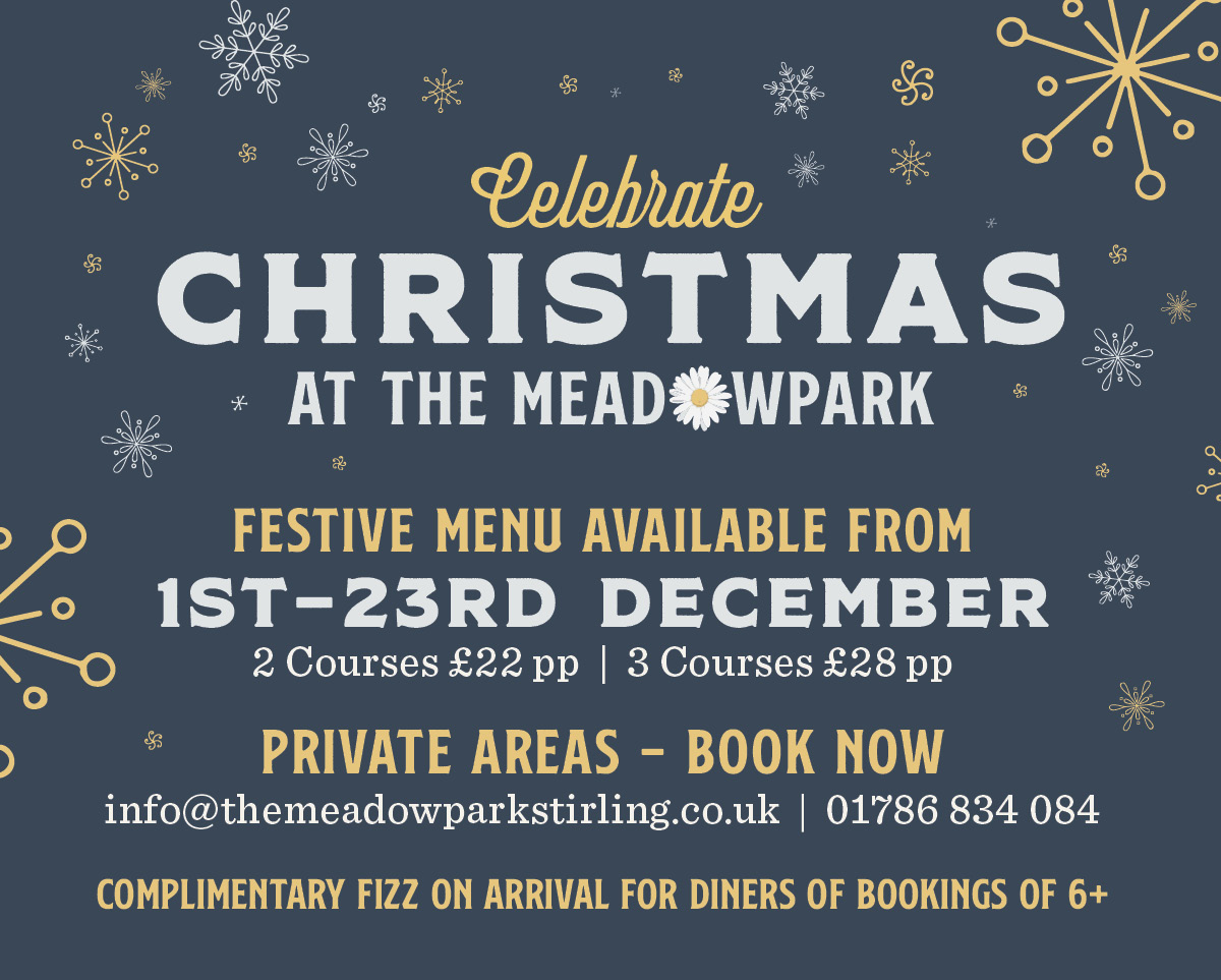 The Meadowpark Christmas Bridge of Allan Stirling Festive Night Out Book Online